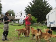 Hotelier and puppies near Cotopaxi