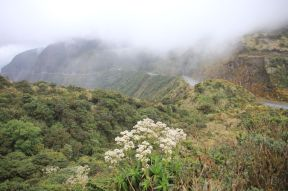 Road through Sangay NP