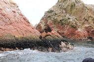 The Islas Ballestas are a sight of themselves, rocky, colourful, wild