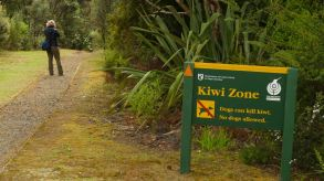 This is Kiwi zone.... later we found one