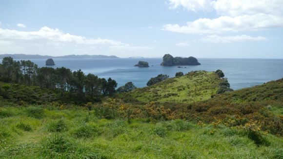 The Hot Water Beach is located on the Coromandel Peninsula. There are some nice walks in this area.