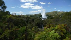 There is a geyser that erupts every hour for 15 minutes. It is a nice thing inmost the forest here in Te Puia