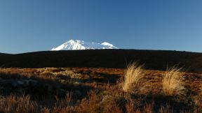 view on the largest volcano here: Mt Ruapeu